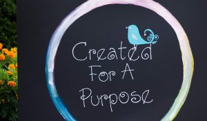 Created For a Purpose Camp Aug 5-8,2019 ( The Vine & Providence )